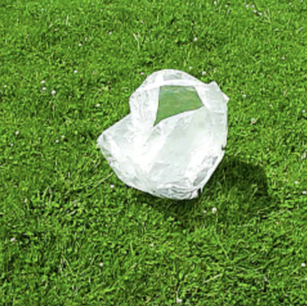 Plain plastic bag rolling across the grass in the wind