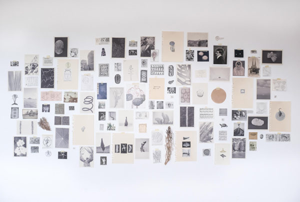 graduation project Atlas of the Meticulous World of Being, Maria Brazão Sousa