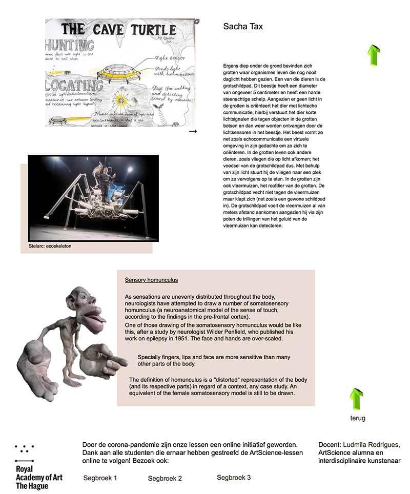 Screenshot Kunstplan ArtScience 2019-2020