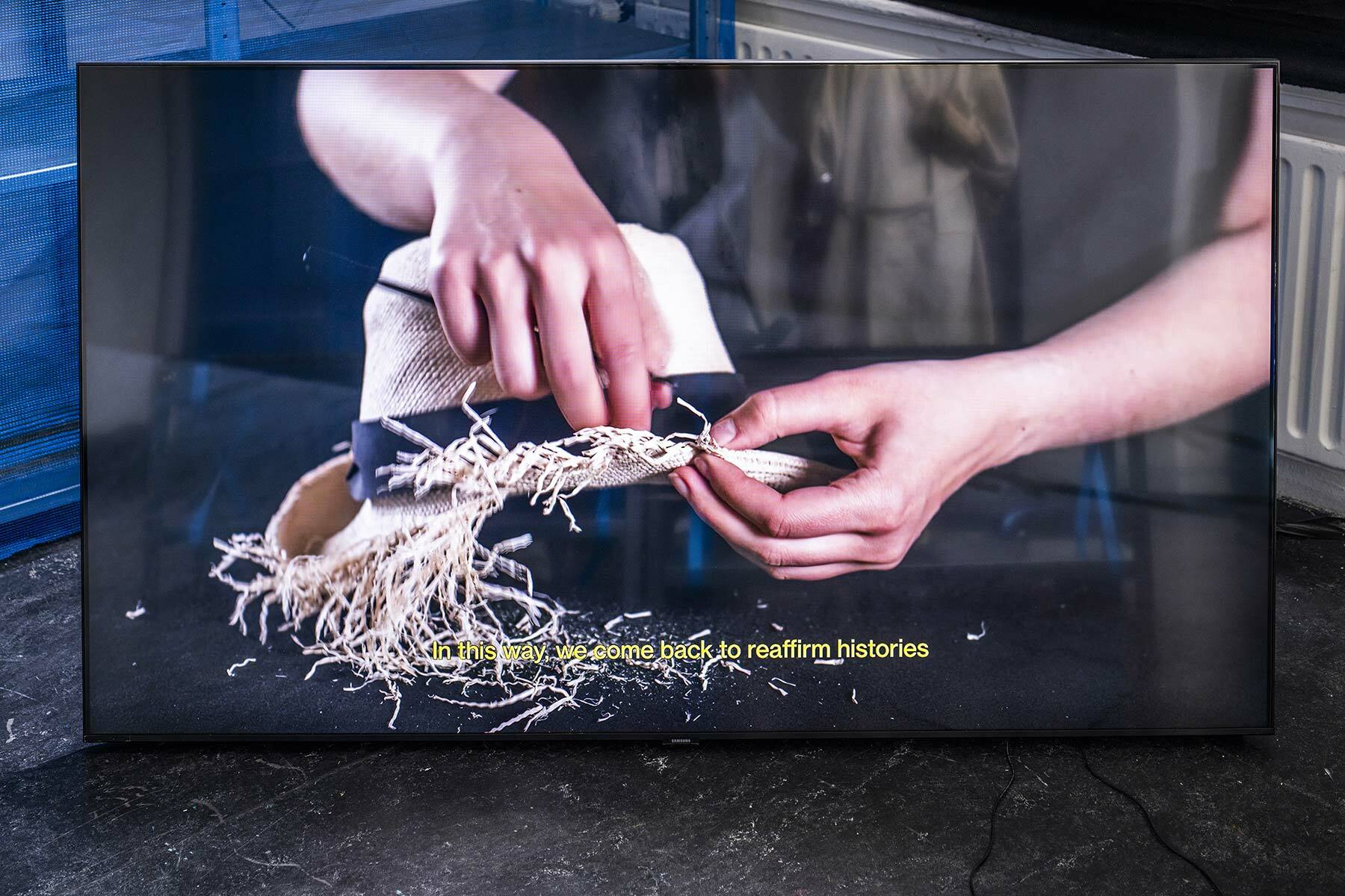 Beyond Taxonomic Narratives, NLN Graduation project 2020-2021 by Natalia Śliwińska
