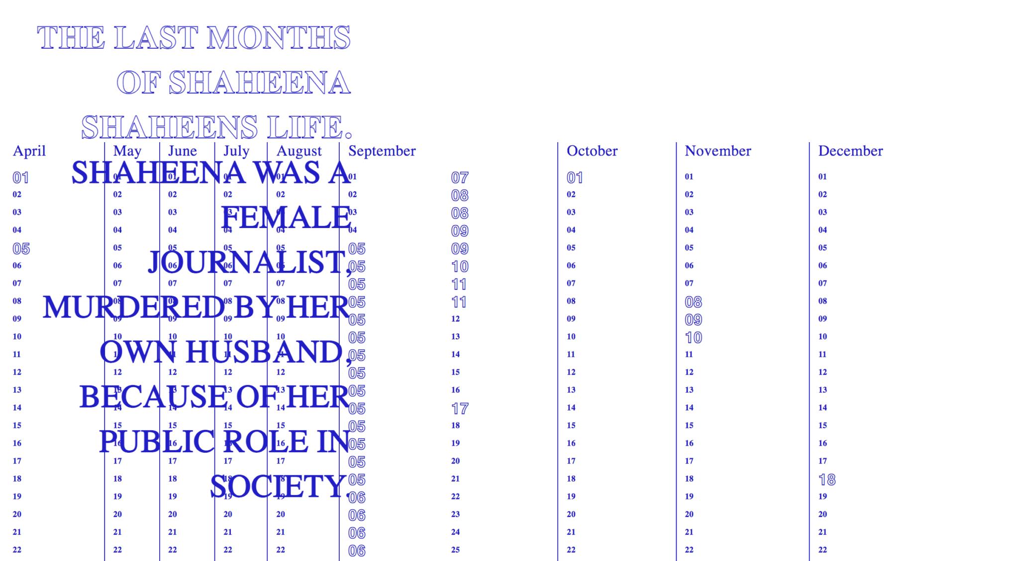 screenshot http://pakistan.rectangle.design/